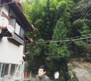 matsushima_11