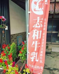 matsushima_23